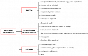 Diagram systematyki - przykład